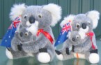 Koala plush toy with Australian flag
