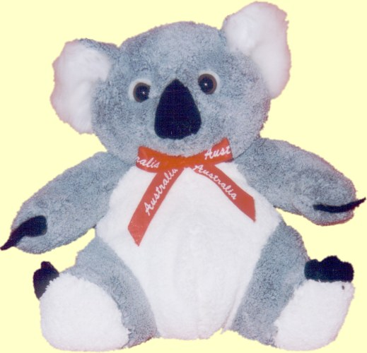 koala teddy bear