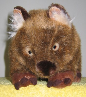 wombat picture 2