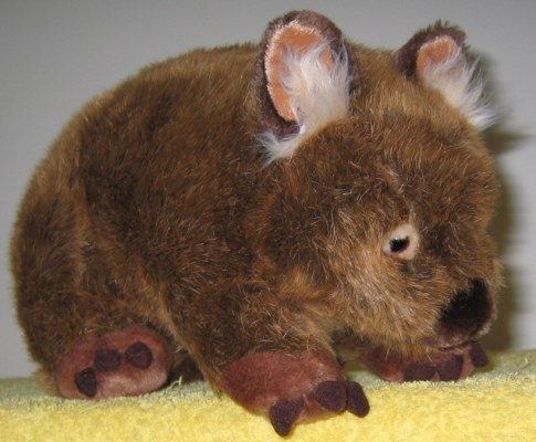 wombat picture 1